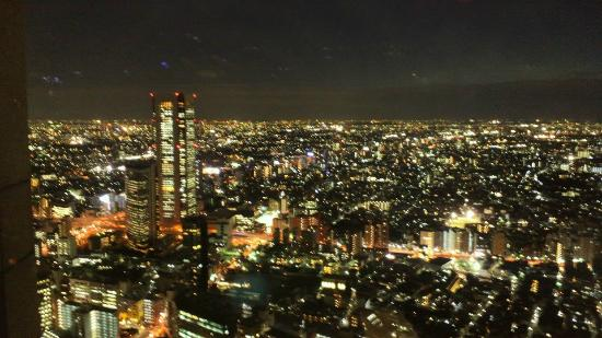Tokyo Metropolitan Government Office: 展望台からの夜景