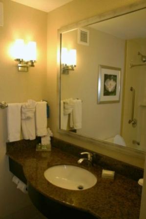 Hilton Garden Inn Jackson Downtown: Bathroom