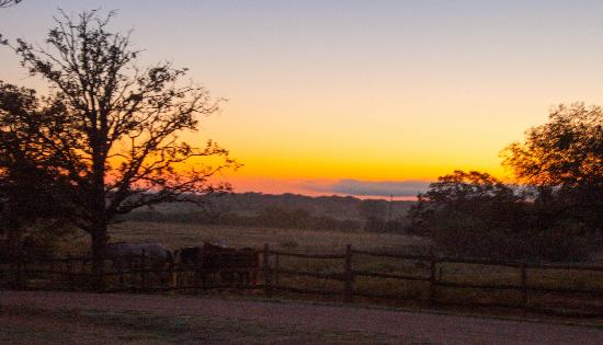 Spotted Pony Ranch: Sunrise