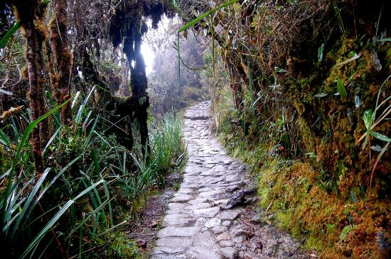 Wonder Adventures - Private Machu Picchu Day Tours