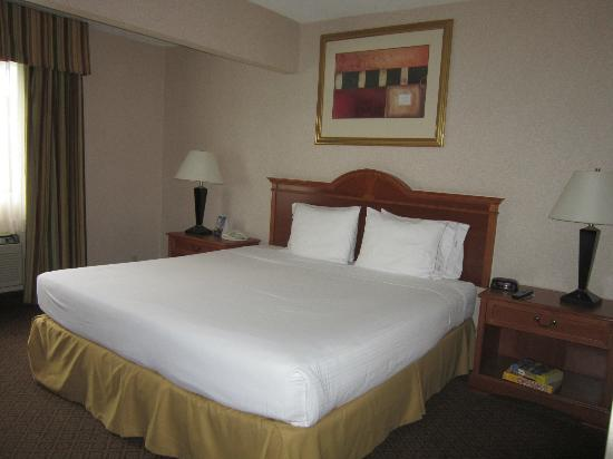 Quality Inn & Suites Oceanside: Bed