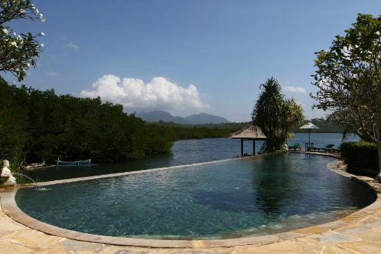 Mimpi Resort Menjangan: Pool