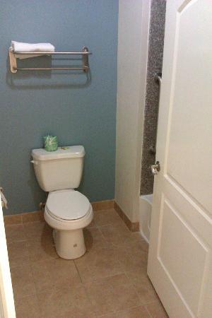 Super 8 Houston North I-45: bathroom