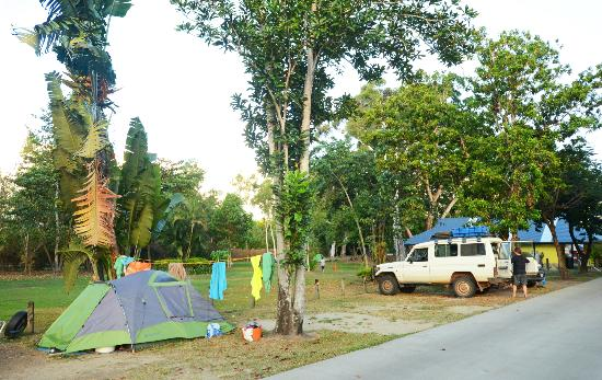 NRMA Cairns Holiday Park: Overflow camping