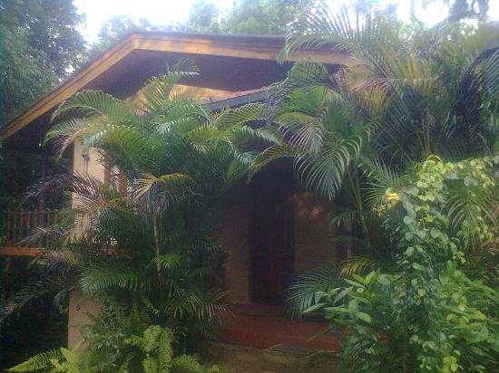 Kanneliya Forest Resort: the rooms