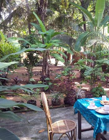 Sherin Cottage: Breakfast in the backyard