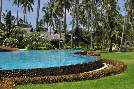 marlin restaurant picture of phi phi island village. Black Bedroom Furniture Sets. Home Design Ideas
