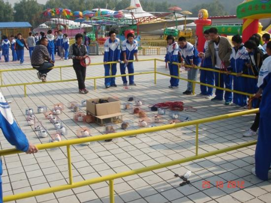 China Aviation Museum: Schools kids wasting money trying to score a bunny