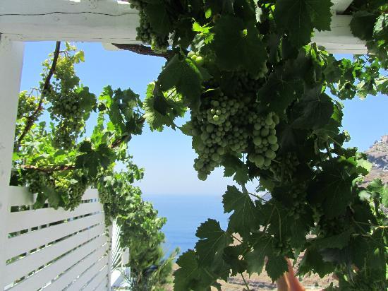 Porto Fira Suites: More of our private balcony