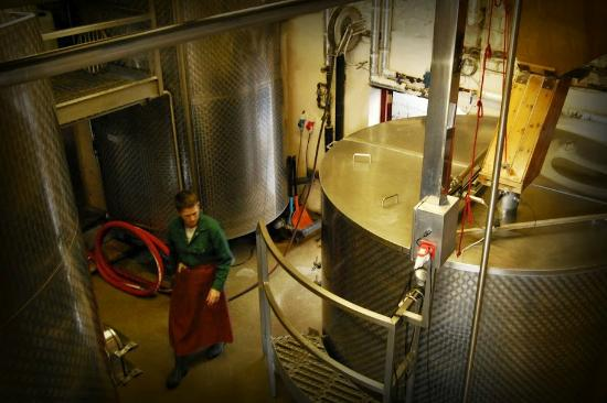 Hogs Back Brewery: Our brewster hard at work inside the heart of the brewhouse.