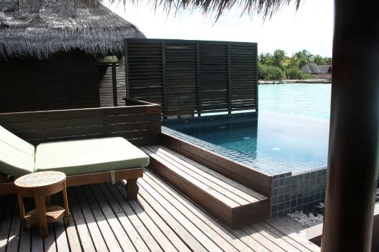 Taj Exotica Resort & Spa: Private sun deck with pool and daybeds