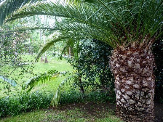 Cases Couleurs: jardins devant la chambre