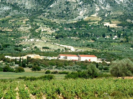 Kefalonian Robola Wine Cooperative