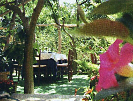 La Tavola Di Lucullo : il giardino