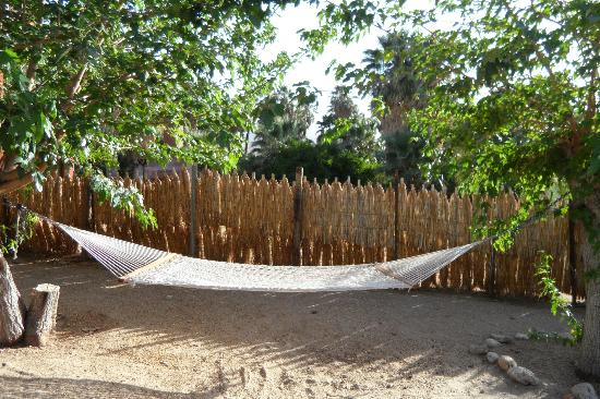 29 Palms Inn: Le hamac 