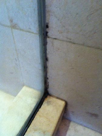 Park Hotel Nusa Dua: shower