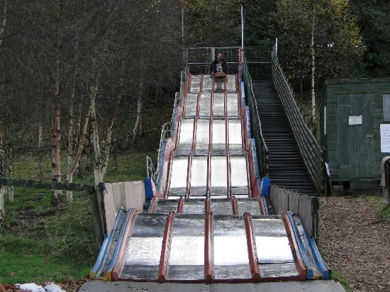 Mabie Farm Park: Brilliant slide at the side of the hill