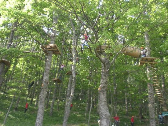 Longi, Италия: parco avventura percorso verde
