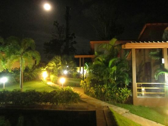 เอสเคป เคบินส์: night path way