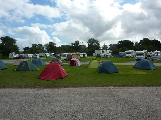Woodlands Caravan Park: Camp site view