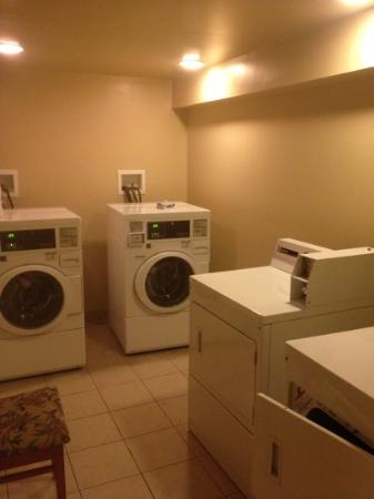 Nichols Village Hotel & Spa: laundry