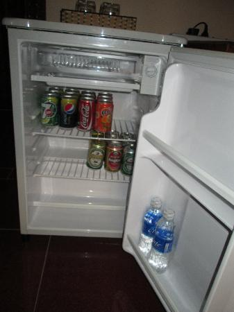 Watery Fowls Guesthouse: Mini-Bar