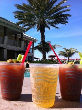 Sandpearl Resort: Cheers to SandPearl Staff! Very friendly!