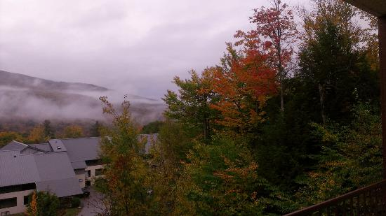 InnSeason Resorts Pollard Brook: Trees right outside our room beginning to turn fall colors
