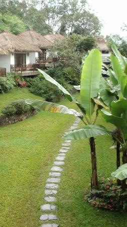 Kelimutu Crater Lakes Eco Lodge: jardin et bungalows