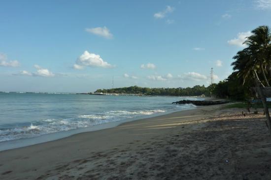 Frangipani Beach Villa Restaurant:  vue sur la mer du restaurant