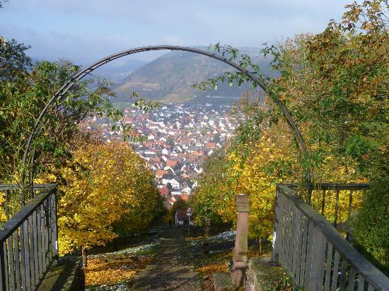 Hotel Rosenbusch: Blick auf Großheubach vom Kloster Engelberg