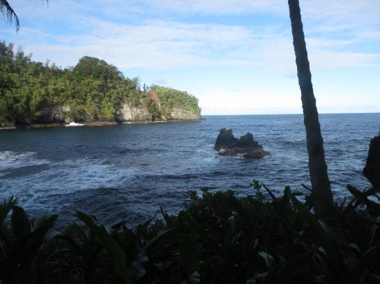 Hawaii Tropical Botanical Garden: Seascape