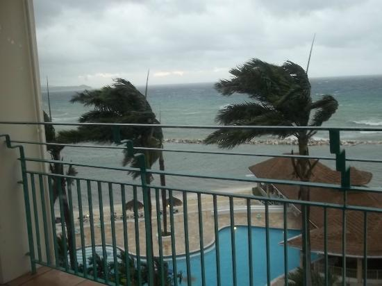 Sunscape Splash Montego Bay : Palms Blowing Chairs in Pool Below