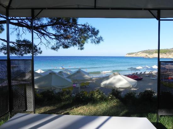 Royal Paradise Beach Resort & Spa: Вид на море