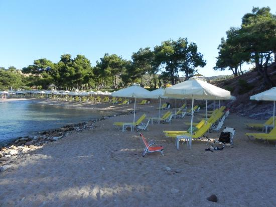 Royal Paradise Beach Resort & Spa: Пляж
