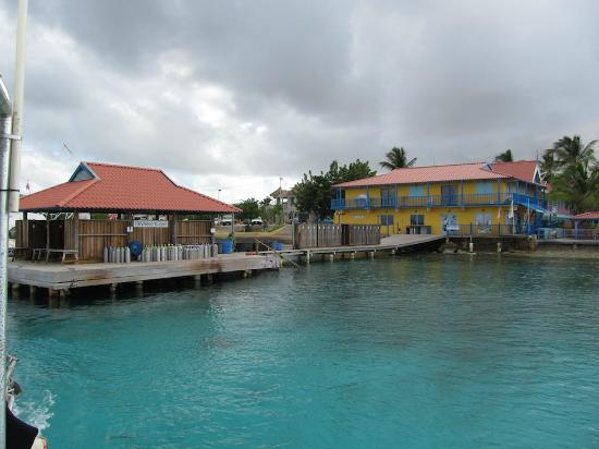 Divi Flamingo Beach Resort and Casino : dive dock