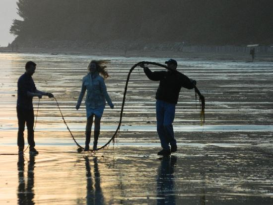 South Chesterman Beach Condos: skipping with kelp on the beach