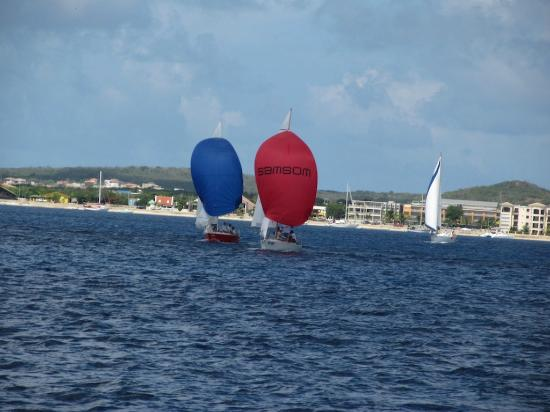 Divi Flamingo Beach Resort and Casino: sailing in the Regatta