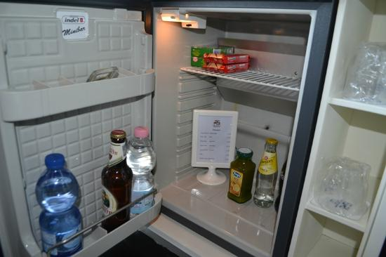 Hotel San Ranieri: Fridge