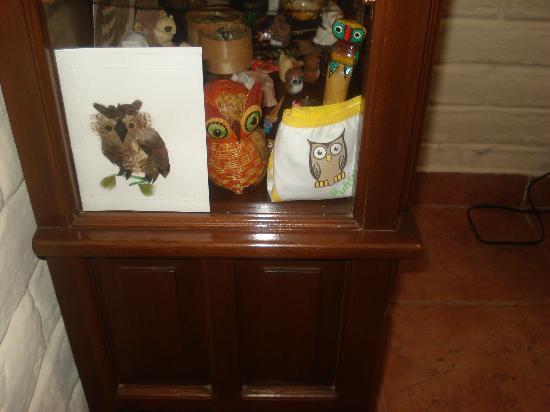 The Owl's Inn: colección de buhos