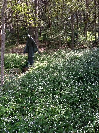 Umlauf Sculpture Garden Museum Austin 2018 All You Need To Know Before You Go With Photos