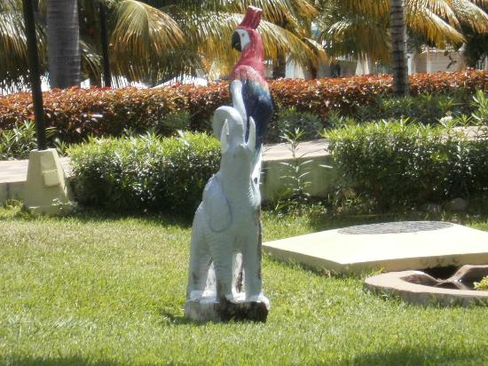 Hotel Riu Ocho Rios: This is in the hotel gardens