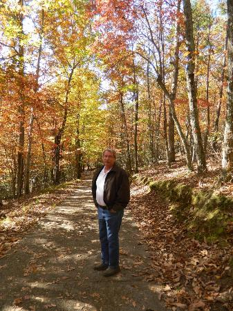 Lawsonville, Carolina del Norte: Didn't we pick the right weekend for the fall colors??