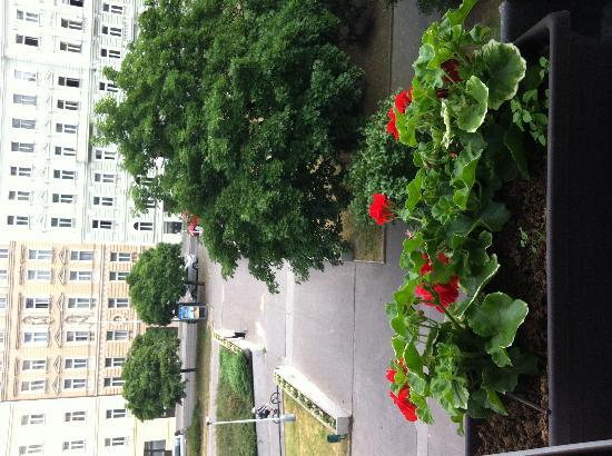Green Garden Hotel: Вид из окна