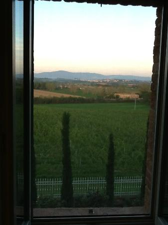 Siena House: Another view from our room, out to the surrounding pastures