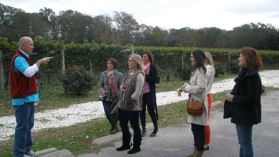 Tastings And Tours Cape May Nj