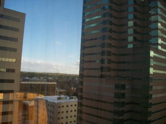 Hilton Lexington Downtown: view4