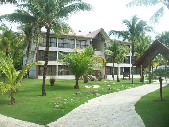 Caf dominicano photo de ifa villas bavaro resort spa for Chambre de guandules dominicano
