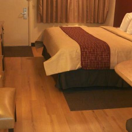 Red Roof Inn - Louisville SE - Fairgrounds: nice new rooms
