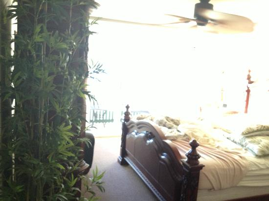 Hotel Coral Reef: Room plants
